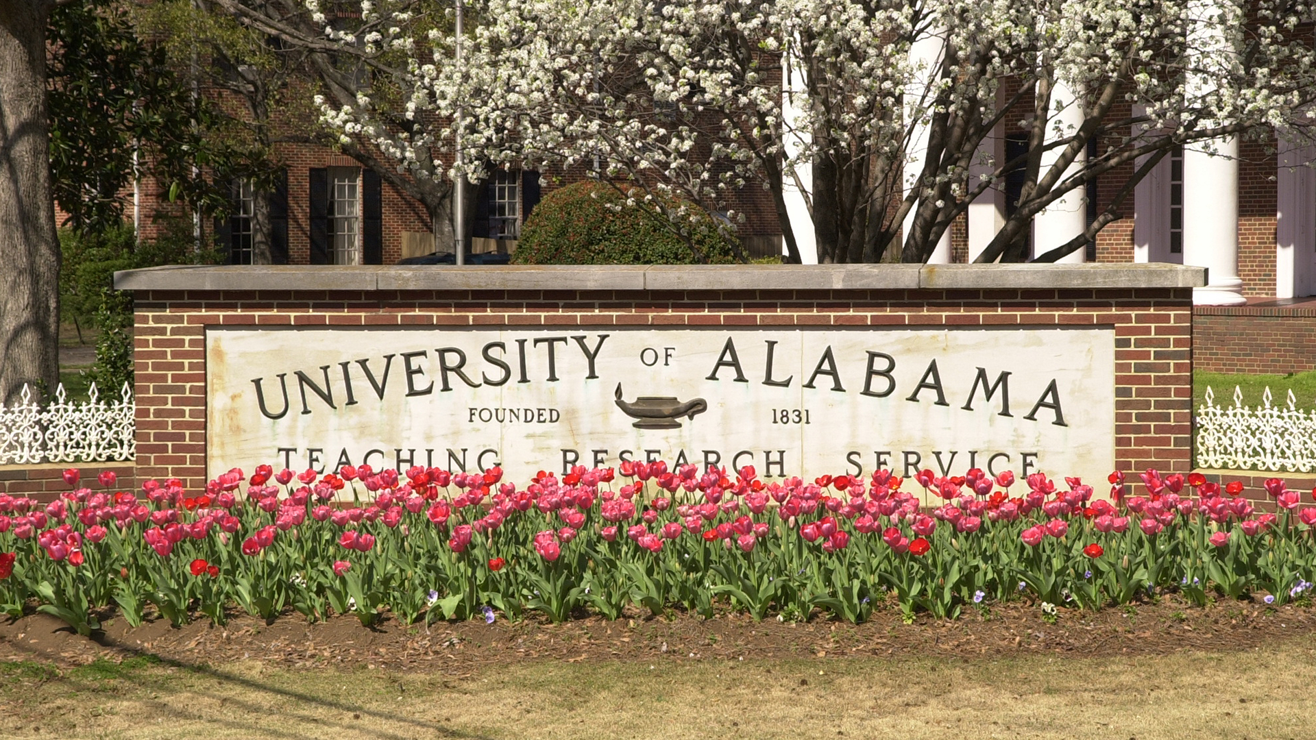 University of Alabama Teaching Research Service